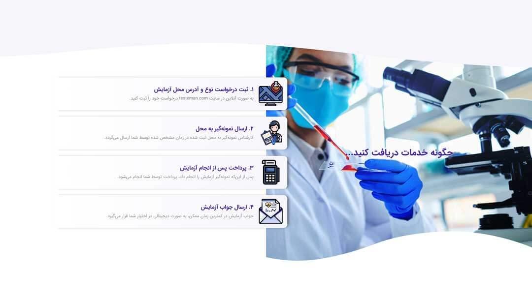 Test-e-Man Laboratory Website